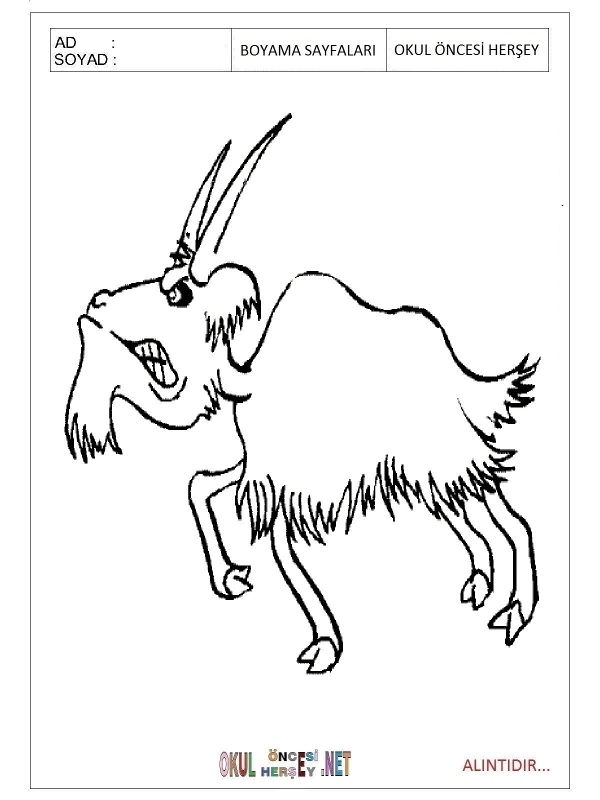 Keçi Boyama Sayfaları