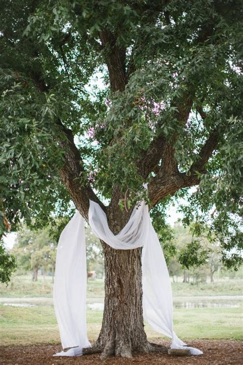 drape fabric over a tree to have simple but stunning