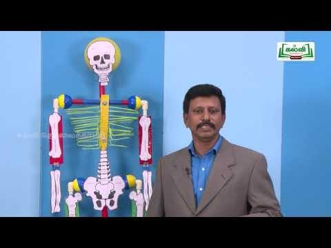 ஆய்வுக் கூடம் Std 8 Science இயக்கம் Part 02 Kalvi TV