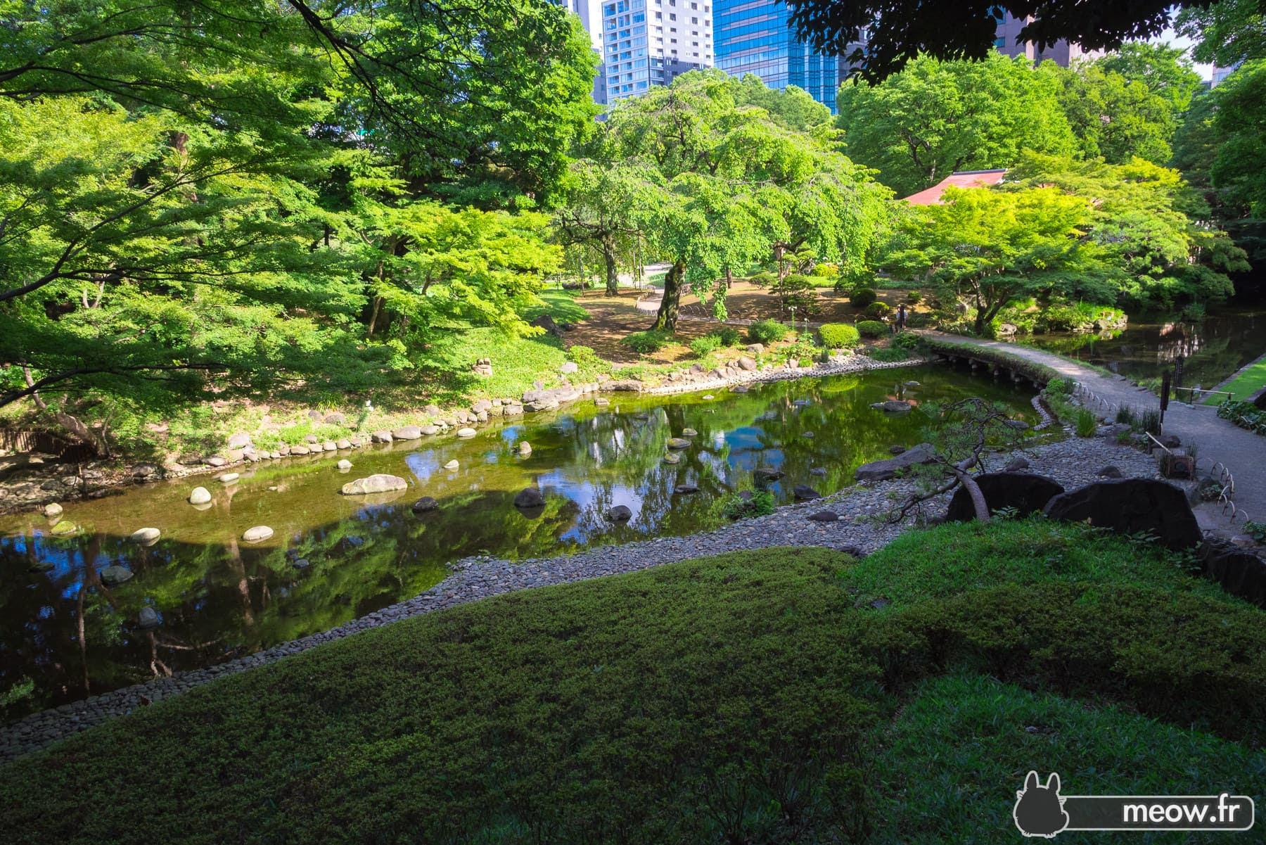 Jardin Botanique De Koishikawa Tokyo Guide De Voyage