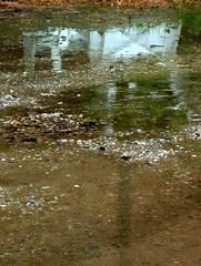 20 mai 2005, pluie