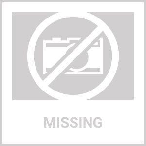 Resultado de imagen de logo ARIZONA COYOTES