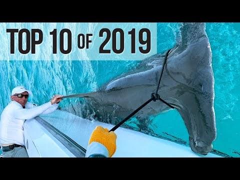 Best Fishing Moments | TOP TEN