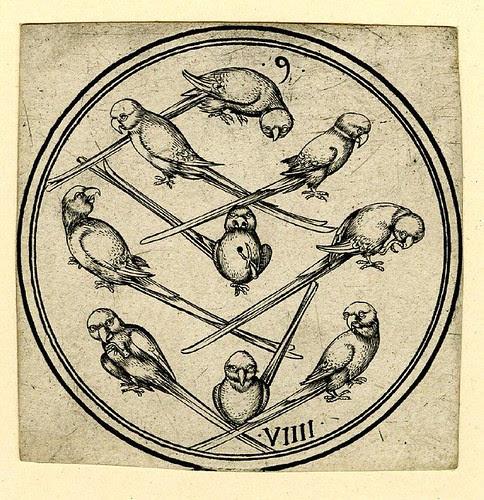 Nine of Parrots