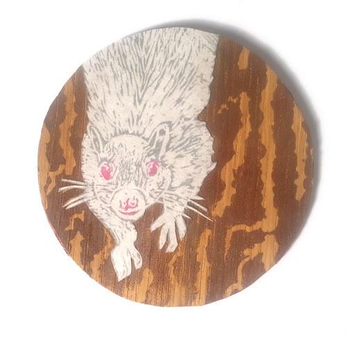 RoundWhiteSquirrel
