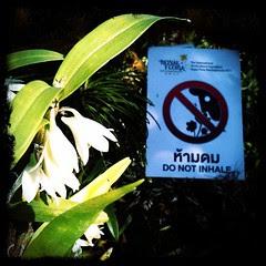 Do Not Inhale!