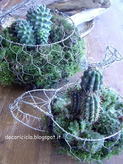 teiera e tazza cactus 4