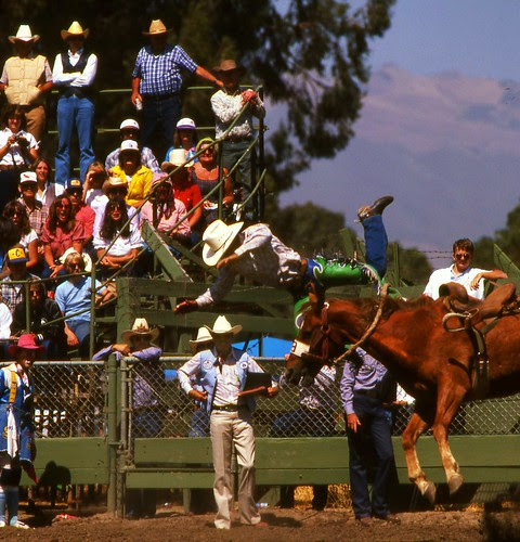 Rodeo Salinas, Salinas Rodeo