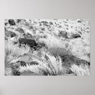 Field of Basalt print