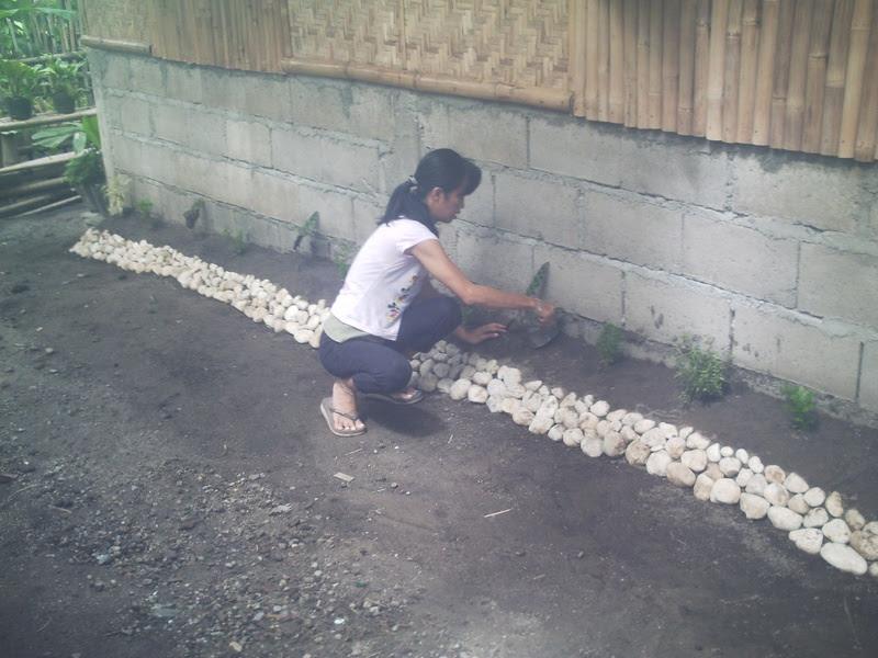 Half Concrete Half Bamboo House Design