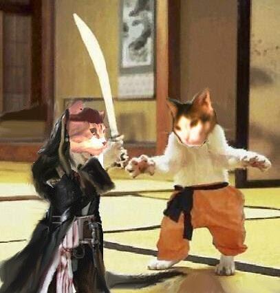 El pirata Catk Perlo  miauw y el ninja Ro-Sito