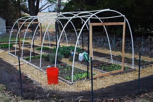 Freshly Mulched Garden 2