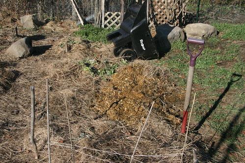 horse manure pile