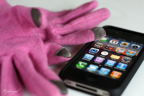 Echo Touch iPhone Gloves