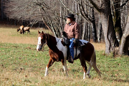 IMG_3214_Elk_Watcher_on_Horseback_in_Cataloochee