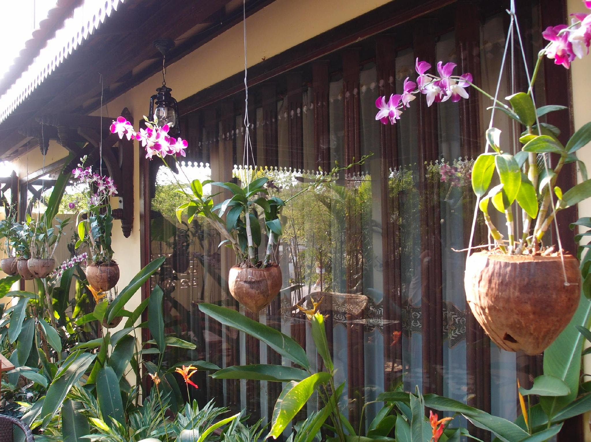 Review Angkor Orchid Central Hotel