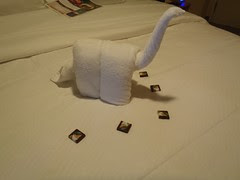 Towel Animal