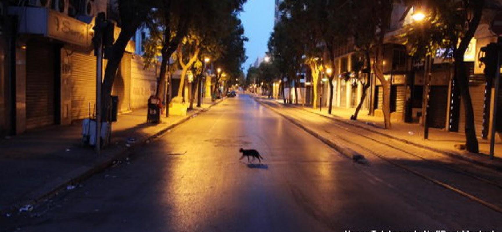 Candide et Pangloss à Tunis pour le Ramadan