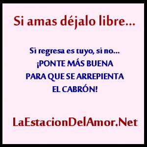 La Frase Cita Si Amas A Alguien La Estacion Del Amor Net