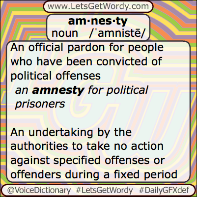 Amnesty 05/28/2013 GFX Definition of the Day