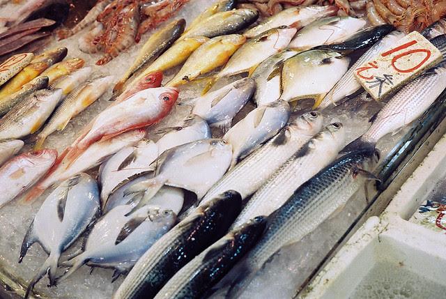fish market in Hong Kong  Minolta Hi-matic