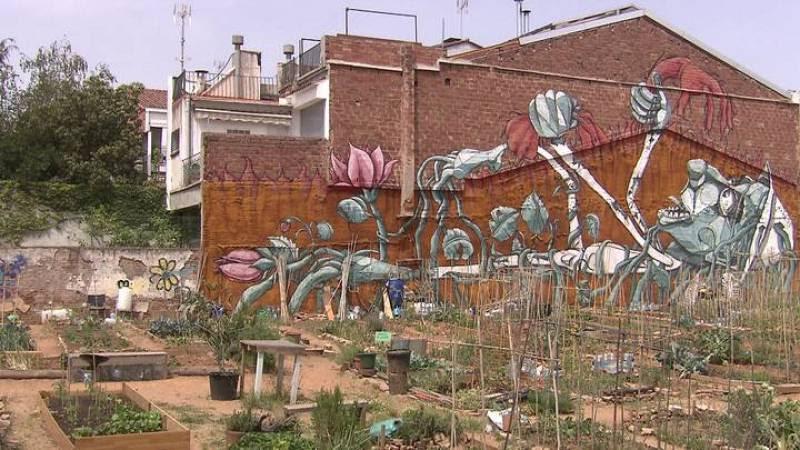 """El """"Hort amb Gràcia"""" ha echado raíces en un solar que llevaba años acumulando escombros"""