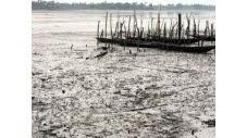 Une odeur de pétrole étourdissante flotte sur la jetée. Les pirogues, l'eau, le sable et les mangroves sont recouverts d'une couche brunâtre visqueuse. Un tableau quotidien pour les habitants de Bodo, dans le sud du Nigeria.  (c) Afp