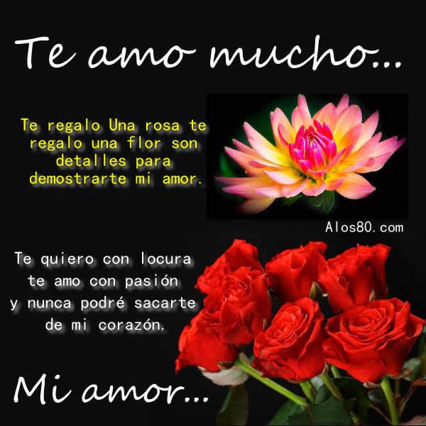 Imagenes Con Frases De Pasion De Amor Consejosdeldia Com