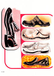 Male Shoe Illustrations