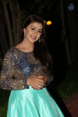 Nikki Galrani New Photos - 12 of 36
