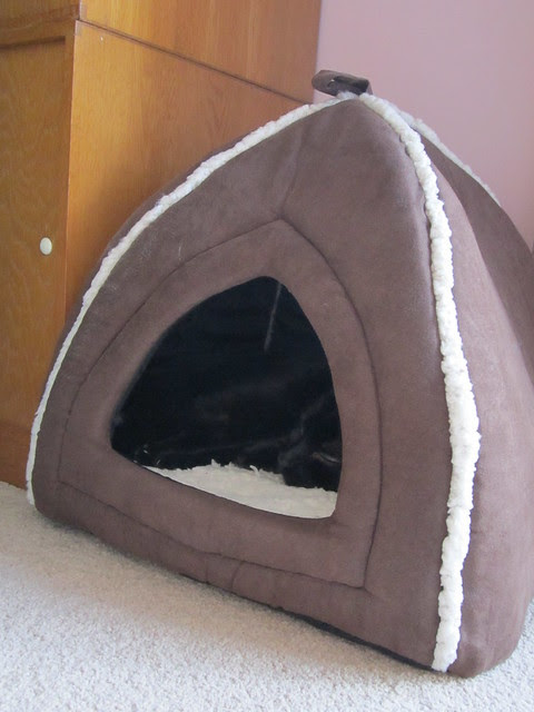 cosy igloo nap (2)