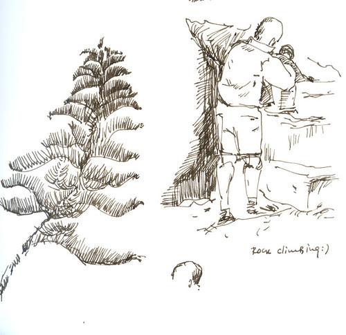 Tree and rock climbing :)