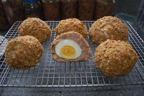 scotch eggs Jan 13