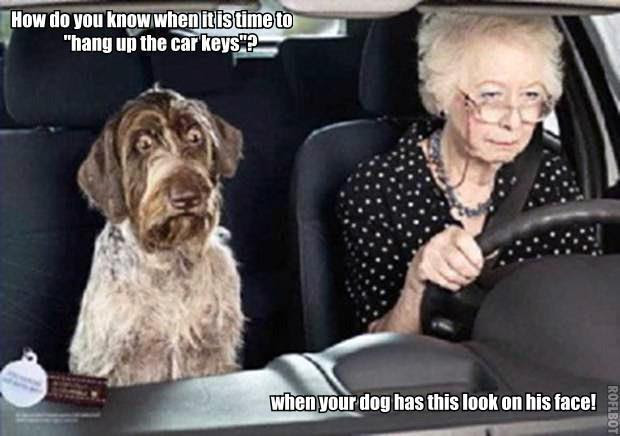Monday's Funny Pictures – 100 Pictures