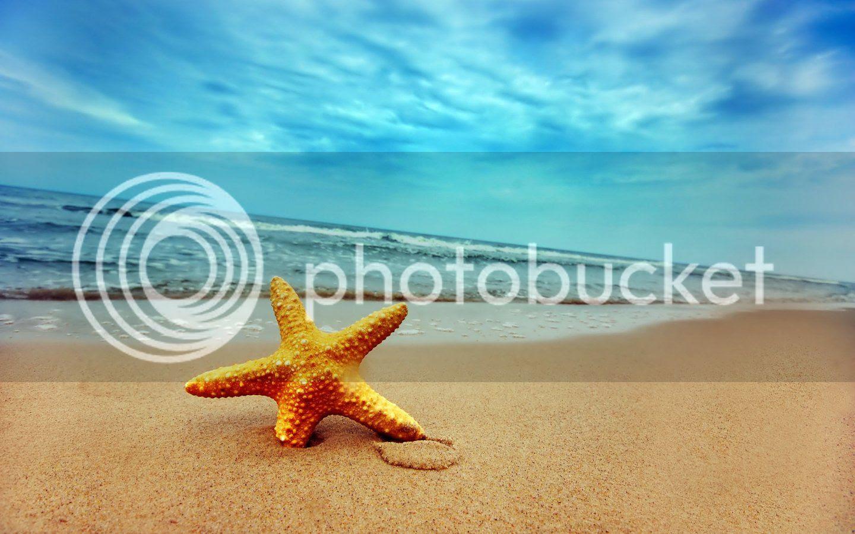 summer beach photo: Beach summer-beach_zps6c8a08e8.jpg