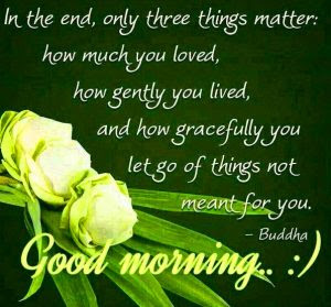 gd mrng images pics Pictures Wallpaper HD for whatsaap