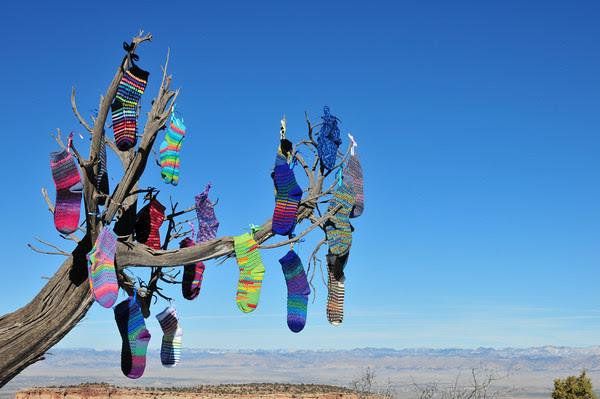 Sock Tree