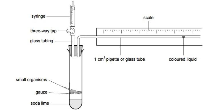 respirometer_orig