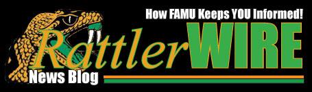 RattlerWIRE