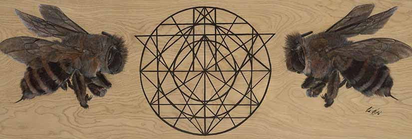 melisses-mathimatika