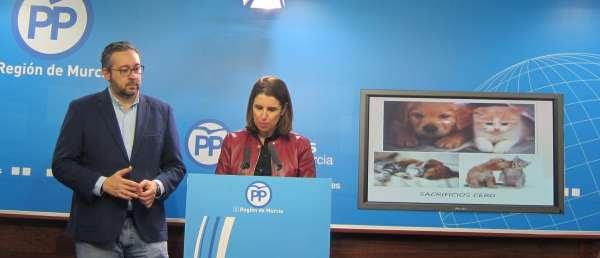 PP espera aprobar en febrero la ley de animales de compañía que recoge multas de hasta 30.000 euros