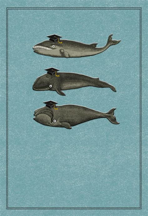 Whale, Whale, Whale Funny Graduation Card   Greeting Cards