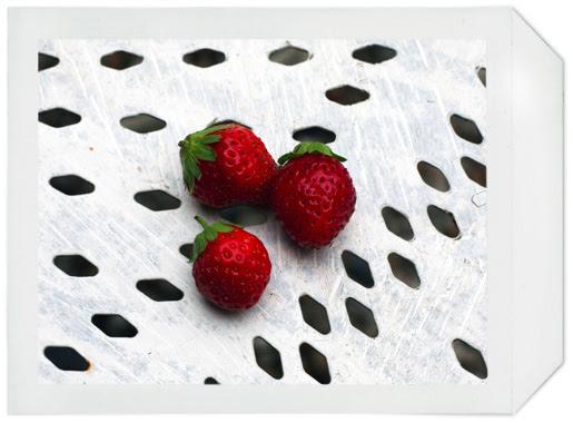 fraises_07