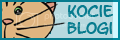 Kocie Blogi