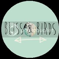 Bliss & Birds