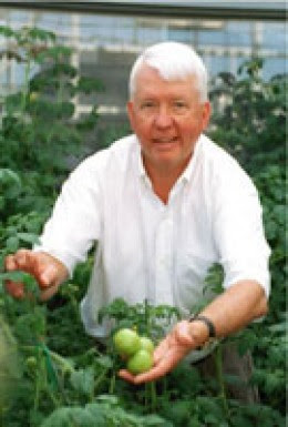 Dr. Charles Arntzen displays some of his vaccine-carrying tomatoes