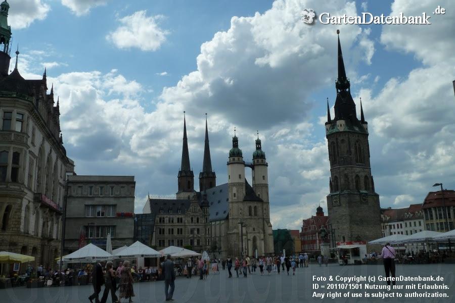 Marktplatz mit Marktkirche und Rotem Turm