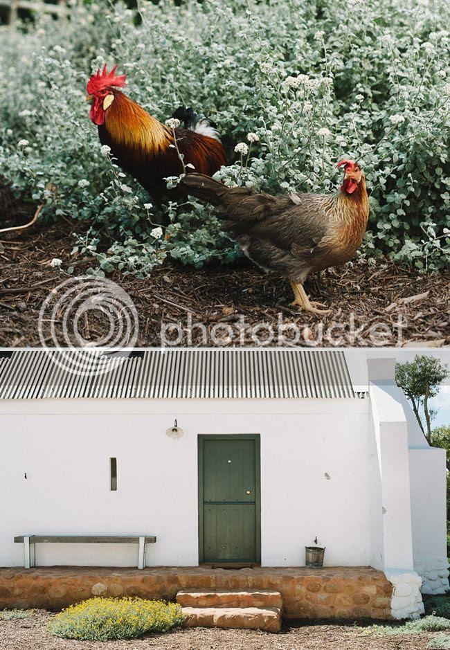 http://i892.photobucket.com/albums/ac125/lovemademedoit/welovepictures%20blog/008_BABYLONSTOREN.jpg?t=1359653126