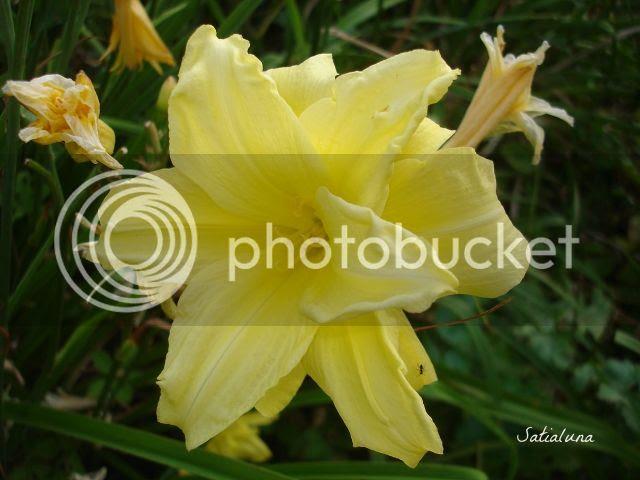photo 403e99c2-f8d0-45c4-b68e-77bac85acd4d.jpg