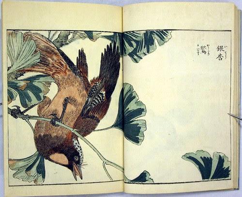 Katyozu birds and flowers album 1805